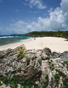 Anse Laborde Guadeloupe