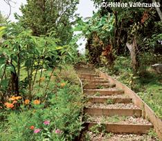 Balade en Guadeloupe