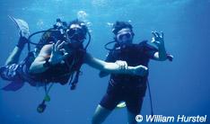 Club de plongée centre nautique Bleu Outremer Guadeloupe