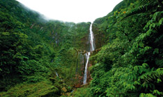 Première Chute du Carbet Guadeloupe