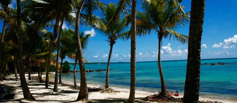 Climat en Guadeloupe