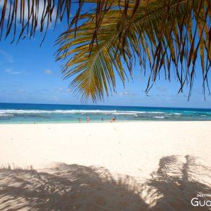 Guadeloupe anse Laborde