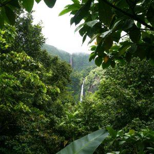 Escalier chutes du Carbet Guadeloupe