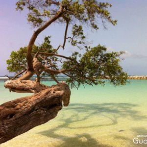 Guadeloupe plage du Bourg de Sainte-Anne