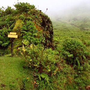 La Soufrière, volcan Guadeloupe