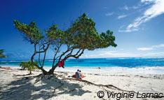 Plage de rêve Guadeloupe Saint-François