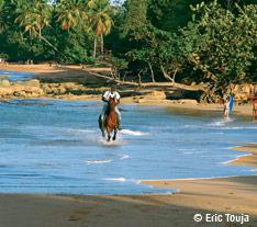 Balade à cheval, plage de Guadeloupe