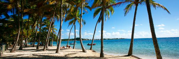 Plage de la Caravelle à Sainte-Anne Guadeloupe