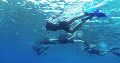 Loisisrs sportifs mer Basse-Terre Guadeloupe