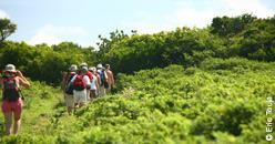 Ambiance randonnées et balades en Grande-terre