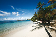 Plage de la Caravelle Sainte-Anne Guadeloupe