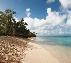 Anse du Souffleur, plage de Guadeloupe