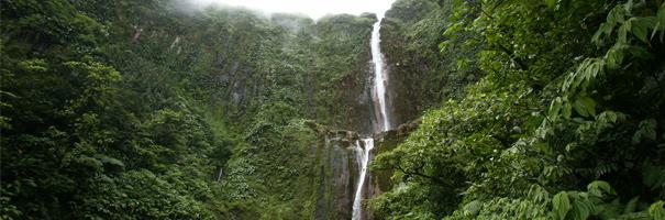 Randonnée aux chutes du Carbet