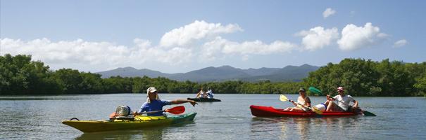 Excursion mangrove