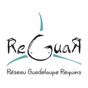 reguar
