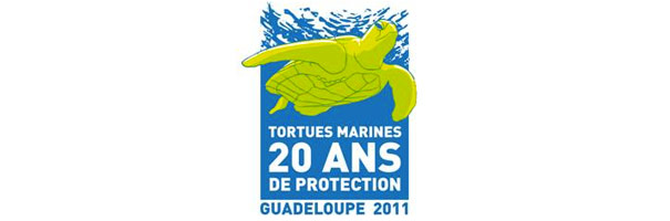 Protection des tortues marines