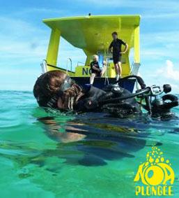 Noa plongée : promos spéciale 10 ans