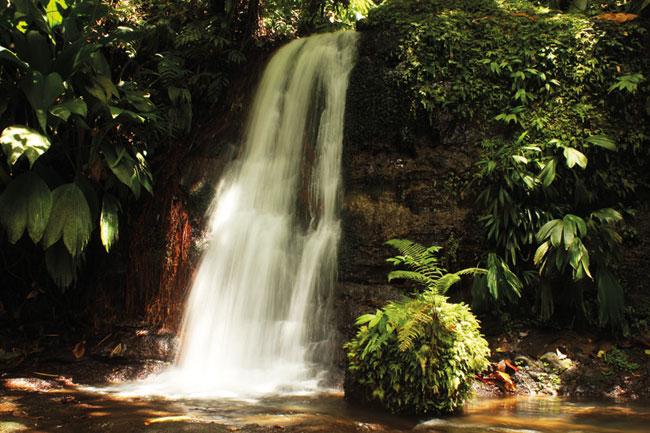Bassin Colot et cascade tambour Guadeloupe