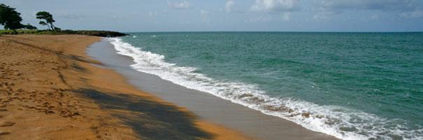 Balade sur le littoral de Sainte-Rose