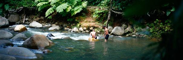 Rivière Bras David Basse-Terre
