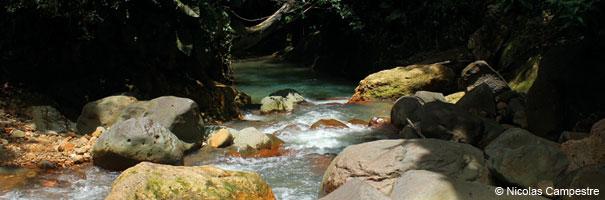 Rivière Grande Plaine, saut d'Acomat
