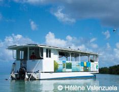 Bateau électrique solaire Guadeloupe