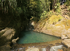 Bassin bleu Guadeloupe