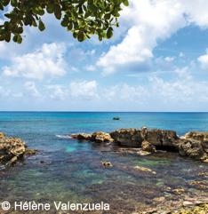 Sentier Pointe Plate Guadeloupe