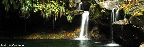 Bassin Paradis Guadeloupe