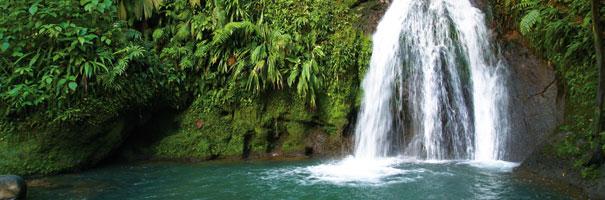 Cascade aux écrevisses Guadeloupe
