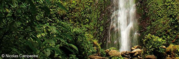 Chutes Moreau Guadeloupe
